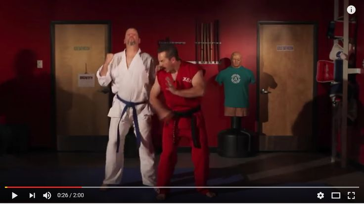 Selbstverteidigung á la Master Ken ...