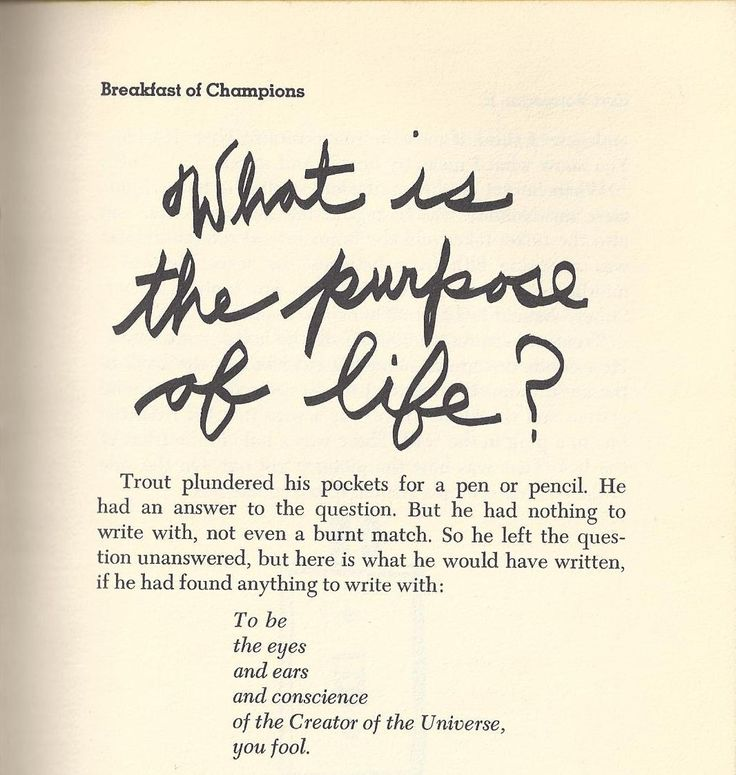 breakfast of champions • kurt vonnegut