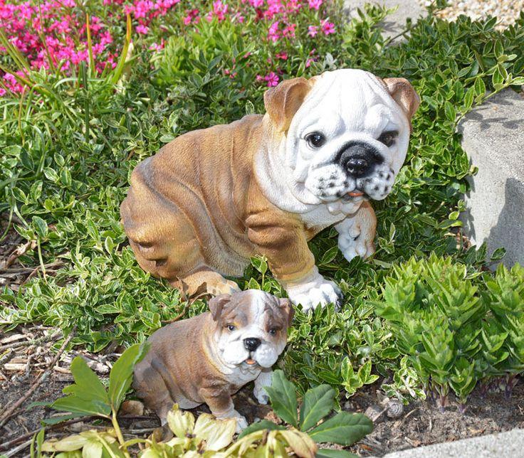 Engelse bulldog beeld kopen?   GerichteKeuze