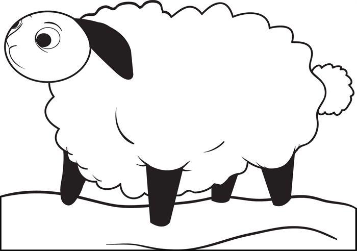 die besten 25 cartoon lamb ideen auf pinterest schafzeichnung zeichnung f r kinder und wie. Black Bedroom Furniture Sets. Home Design Ideas