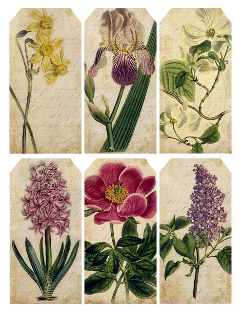 Ultimamente encuentro unos filones de imágenes que me encantan.  Hoy le toca el turno a las etiquetas de flores vintage   Espero que os gust...