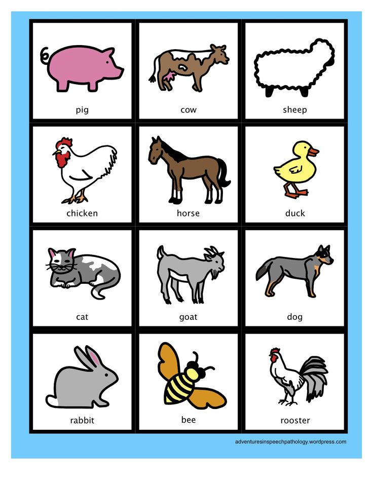 Farm Animals, food, and objs to expand expressive language