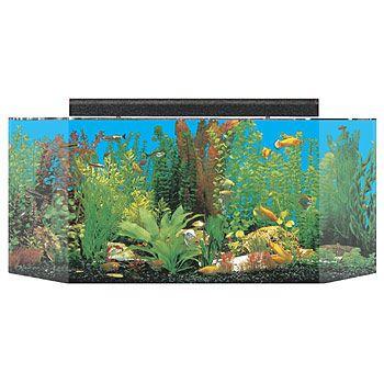 SeaClear Flatback Hexagon Aquarium Combos