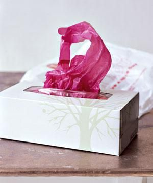 Tissue box filled with grocery bags