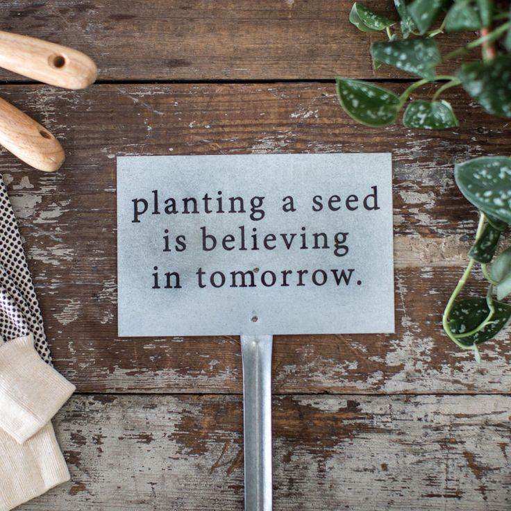 """Planting a Seed"" Garden Stake - Magnolia Market 
