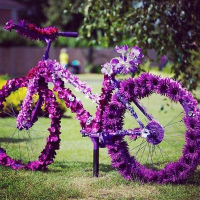 bicycle, orchids, floral arrangements, mehendi, outdoor, vehicles, quirky,  offbeat, royal, whimsical