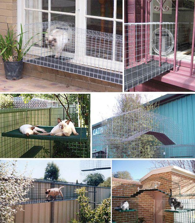 more catio ideas outdoor cat houses pinterest ideas