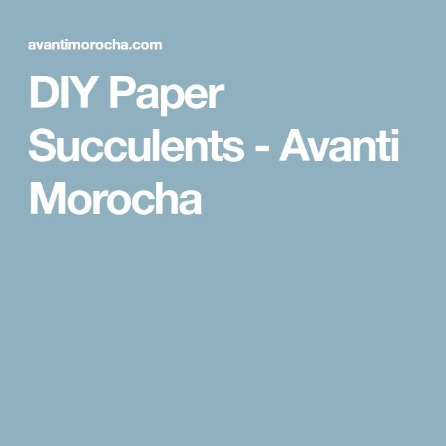 DIY Paper Succulents - Avanti Morocha