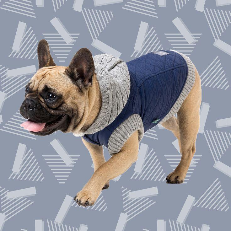 Abrigo para perros FuzzYard Jersey Hoodie Azul