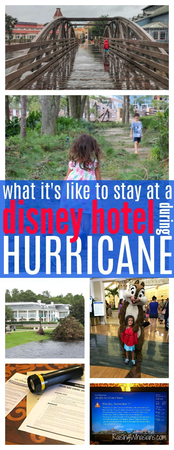 What to Expect When You Stay at a Disney Hotel During a Hurricane   Best Tips - Raising Whasians