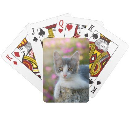 Cute Young Bicolor Cat Kitten Pink Flowers Photo - Playing Cards - pink gifts style ideas cyo unique