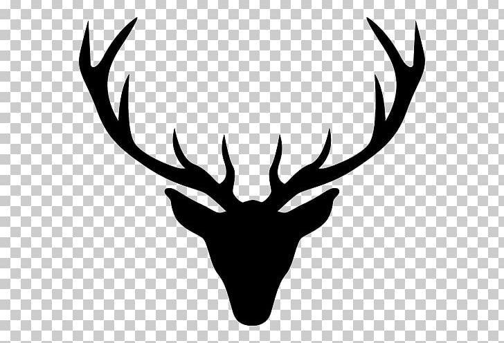 Reindeer Antler Elk Red Deer Png Animals Antler Askartelu Black And White Deer Antler Drawing Reindeer Antlers Reindeer Drawing