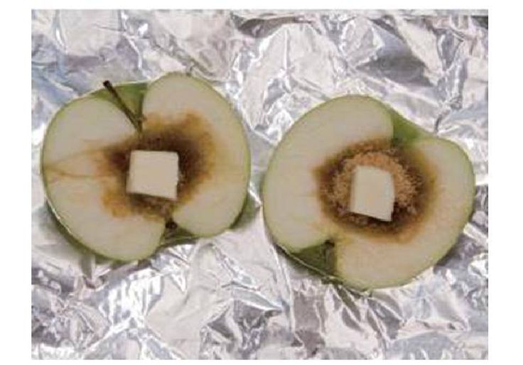 "This looks good!!! Baked Apples--Great snack for camping!  From ""Back to the Basics"":  Cut apple in halve. Hollow out the core and fill with brown sugar and a pat of butter. You may even add a little Cinnamon to it. Wrap in tin foil and place in the coals!"