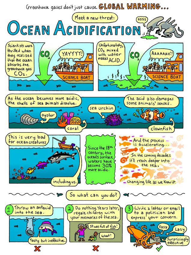 Ocean Acidification and what we can do [COMIC]: Greenhouses Gas, Mothers Earth, The Ocean, Life Science, Environment Advocaci, Ocean 3-5, Ocean Acidif, Science Cartoon, Earth Science