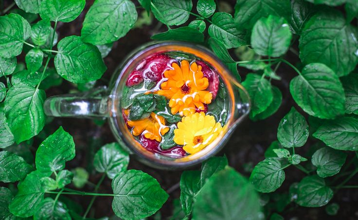 January's Finest Detox 