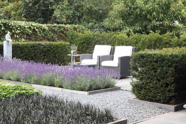 Tussen de struiken genietend in je #tuinstoel van de mooie lila #lavendel.