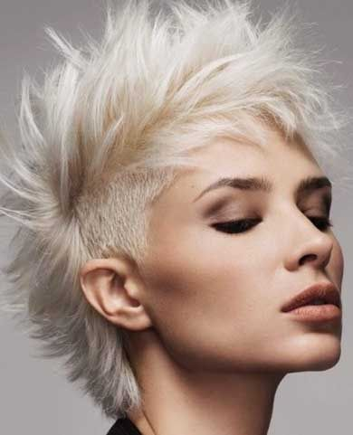 blonde mohawk short hair                                                       …