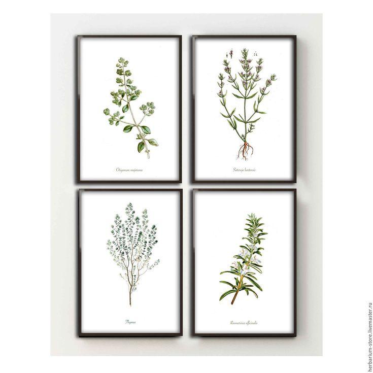 Купить Прованские травы - зеленый, декор для интерьера, декор кухни, декор кафе, ботаническая иллюстрация