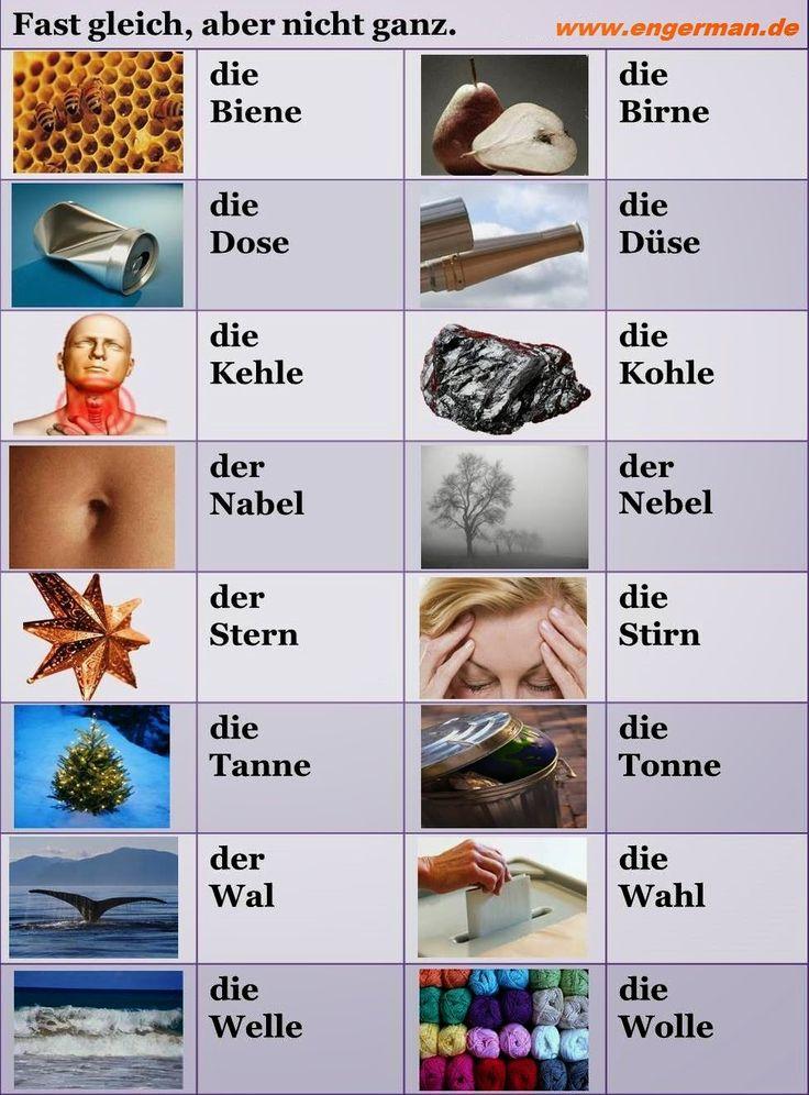 German Vocabulary - Fast gleich, aber nicht ganz ! | L E A R N G E R M A N