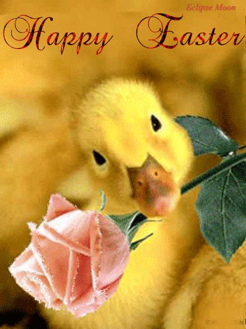 Happy Easter easter easter eggs easter decorations easter quote happy easter easter gifs easter greeting easter wishes happy easter friends and family animated easter