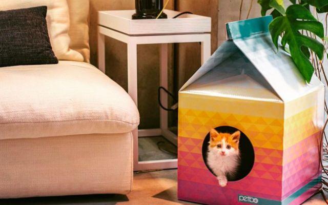 La cuccia a forma di cartone del latte che i gatti ameranno Latte e cartoni sono due della grandi passioni dei gatti di casa. La playhouse di Petbo, le riunisce in un unico oggetto di design: una cuccia per i nostri amici di casa a forma di cartone del latte. #design #gatti #arredamento #animali