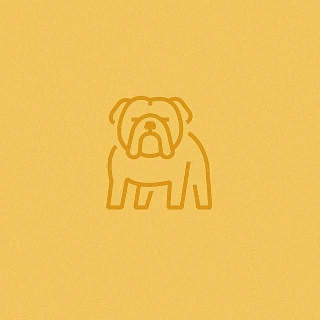 Bulldog Calm Courageous And Friendly Bulldog Drawing Bulldog Tattoo Pet Logo Design