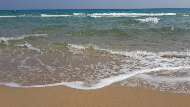Cyprus altınkum