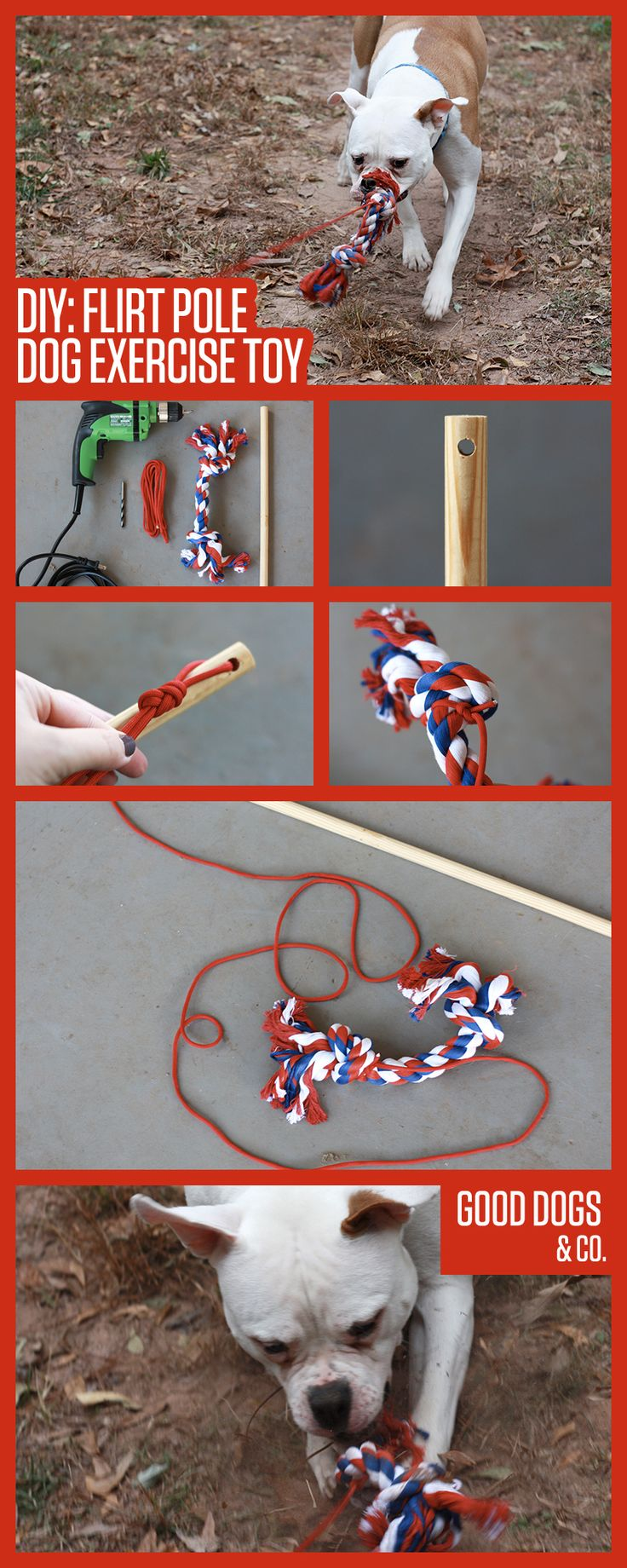 DIY Flirt Pole Dog Exercise Toy! Easy to make, and great for dogs with a high prey drive (or dogs who aren't the greatest at bringing toys BACK after they fetch them)!