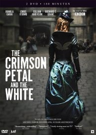 The crimson Petal and the White. I always like a red haired heroine !
