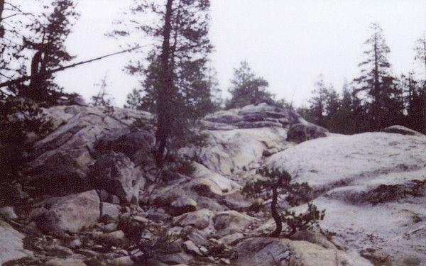 SUKU Blog Pillowtalk: Lani Mitchell – SUKU Home