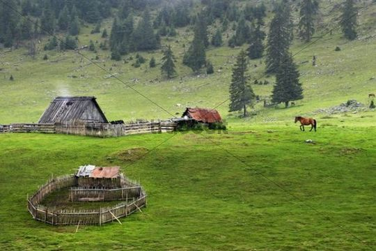Bihor Mountains, Romania. Where my Romani ancestors traveled.