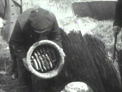Voorjaarsbijenmarkt in Tiel (1940) - YouTube