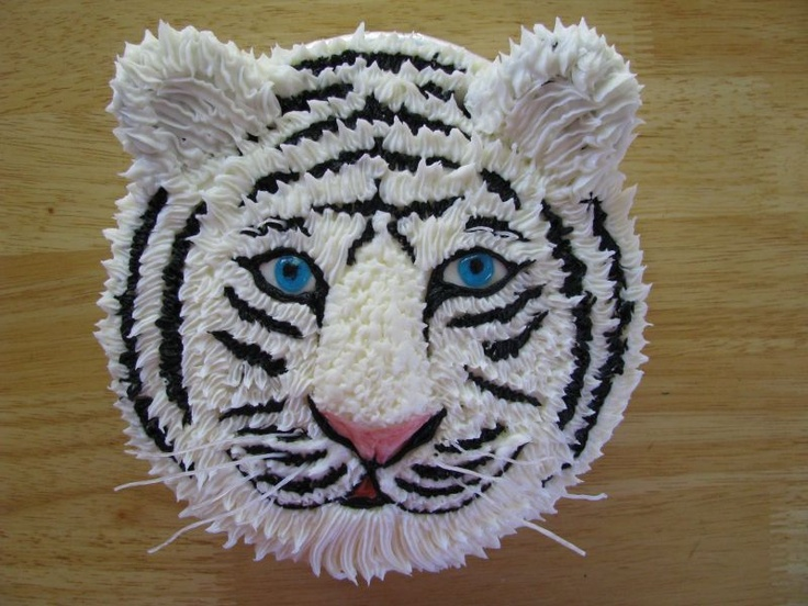 Tiger cake, round cake pan, cookies for ears, nose built up with frosting.