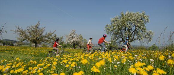 Cykelresor med Prima Travel