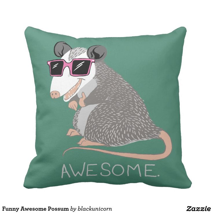 Funny Awesome Possum