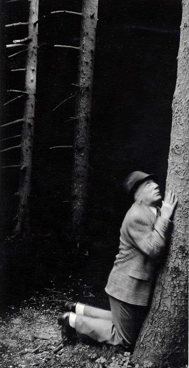 IM WALD, 1986, COURTESY GALERIE FRANÇOISE PAVIOT, PARIS © ANNA & BERNHARD BLUME #photographie