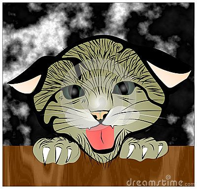 Colored Vector drawing a scared the cats dark cloudy background.