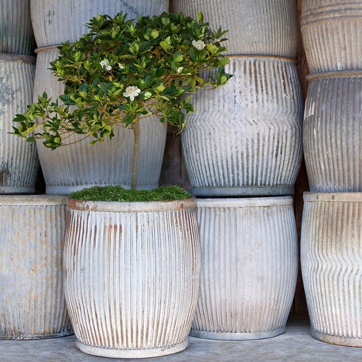 Vintage Zinc Barrel in Garden+Outdoor COLLECTIONS Elemental Garden at Terrain