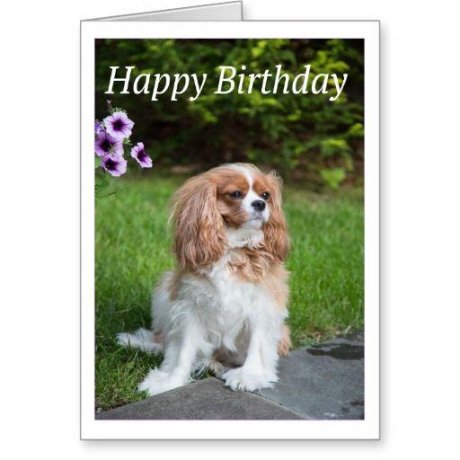 Happy Birthday Flowers Cavalier King Spaniel Card #happybirthday #cavalierkingcharlesspaniel #birthday