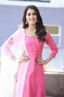 Rashi Khanna Pictures 2419 - Actress Rashi Khanna at Tholi Prema Movie Success Meet