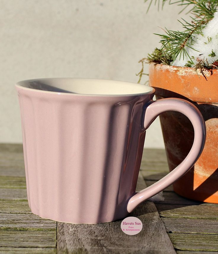lavenderhaze