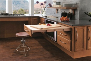 15 Ways to Incorporate Universal Design into a Remodeling Project - Aging In Place, Universal Design, Kitchen, Bath, Accessible Housing, Appliances, Security - Remodeling Magazine
