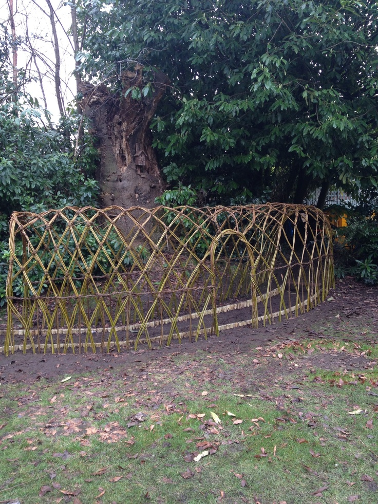 Living willow tunnel181 best garden   screens   fences images on Pinterest   Fencing  . Living Willow Fence Panels. Home Design Ideas