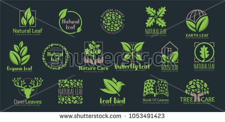 Vector Set of Leaf logo template, 16 professional design in one pack, easy to customize