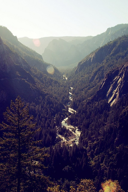 A River Runs Through It #landscape #mountains #river #nature #wild #trees #yosemite #camping