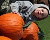pumpkin patches in columbus