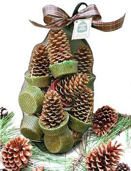 Pinecone firestarters - pretty presentation, but 6 for 20 bucks makes me realize how much money I save by making them!