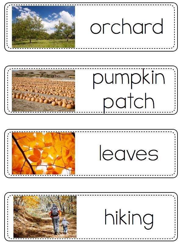 My students LOVE using these vocabulary cards with beautiful pictures to help them with their writing. You can check them out here!