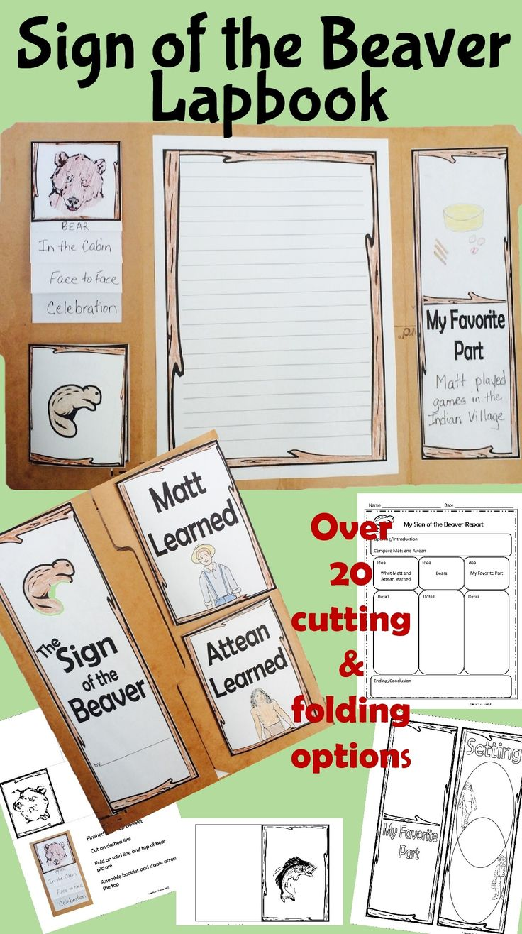 Wrap up your Novel Study with this Sign of the Beaver Lapbook. Use a file folder?