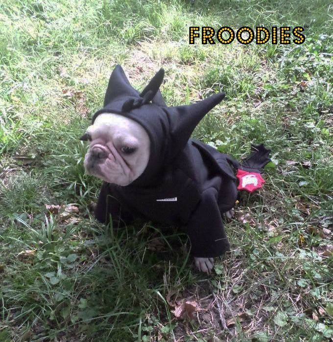 French Bulldog Boston Terrier Pug Dog Froodies Hoodies Halloween Costume Cosplay Toothless Dragon Fleece Jacket Sweatshirt Coat - pinned by pin4etsy.com